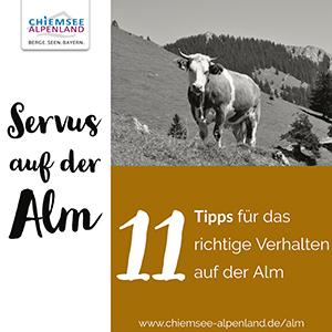 Alm-Verhalten Chiemsee-Alpenland